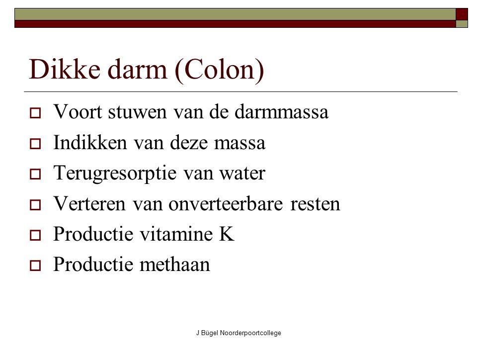 J Bügel Noorderpoortcollege Dikke darm (Colon) VVoort stuwen van de darmmassa IIndikken van deze massa TTerugresorptie van water VVerteren van