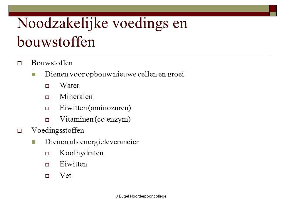 J Bügel Noorderpoortcollege Nuchtere darm  Taak:verder transporteren van de darminhoud  Taak:verder afbreken van de voedingsstoffen  Is meestal leeg bij een overledene(vandaar de naam)