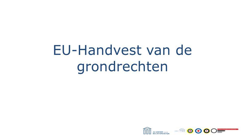 EU-Handvest van de grondrechten