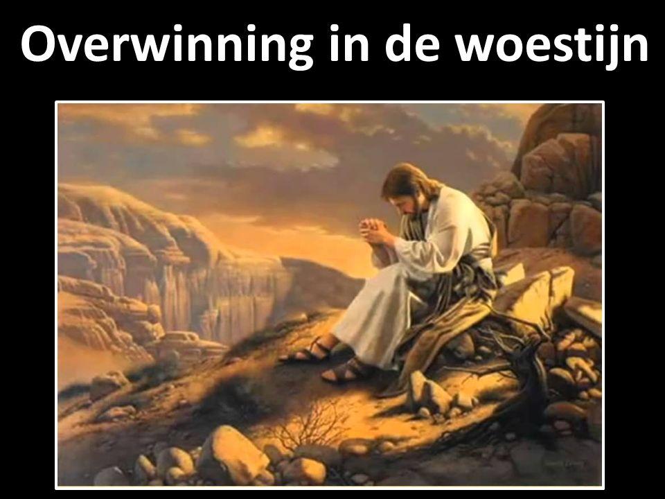 Overwinning in de woestijn