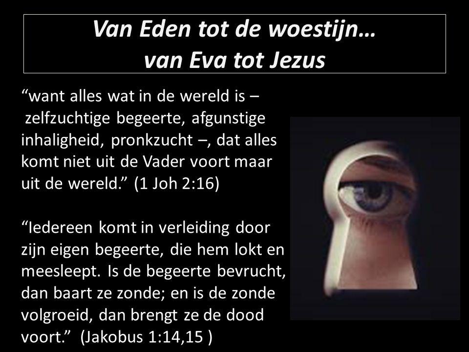 Van Eden tot de woestijn… van Eva tot Jezus want alles wat in de wereld is – zelfzuchtige begeerte, afgunstige inhaligheid, pronkzucht –, dat alles komt niet uit de Vader voort maar uit de wereld. (1 Joh 2:16) Iedereen komt in verleiding door zijn eigen begeerte, die hem lokt en meesleept.