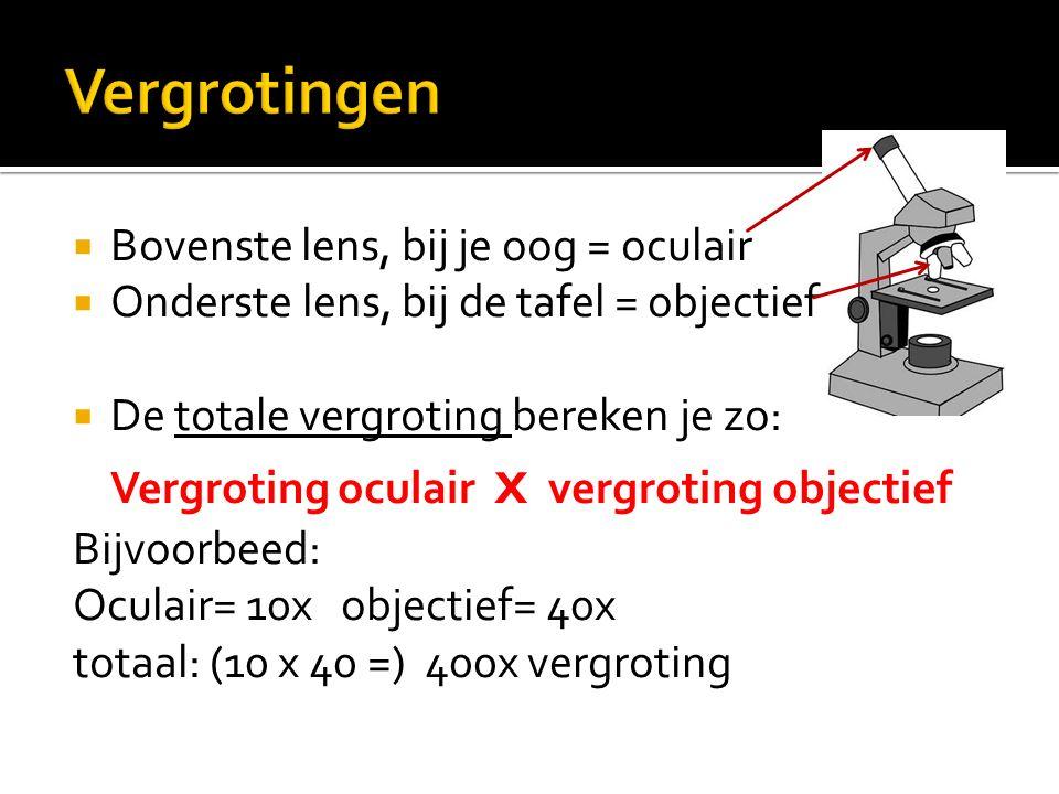  Bovenste lens, bij je oog = oculair  Onderste lens, bij de tafel = objectief  De totale vergroting bereken je zo: Vergroting oculair x vergroting objectief Bijvoorbeed: Oculair= 10x objectief= 40x totaal: (10 x 40 =) 400x vergroting