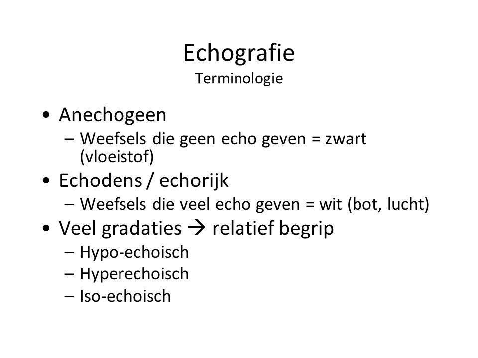 Echografie Terminologie Anechogeen –Weefsels die geen echo geven = zwart (vloeistof) Echodens / echorijk –Weefsels die veel echo geven = wit (bot, lucht) Veel gradaties  relatief begrip –Hypo-echoisch –Hyperechoisch –Iso-echoisch