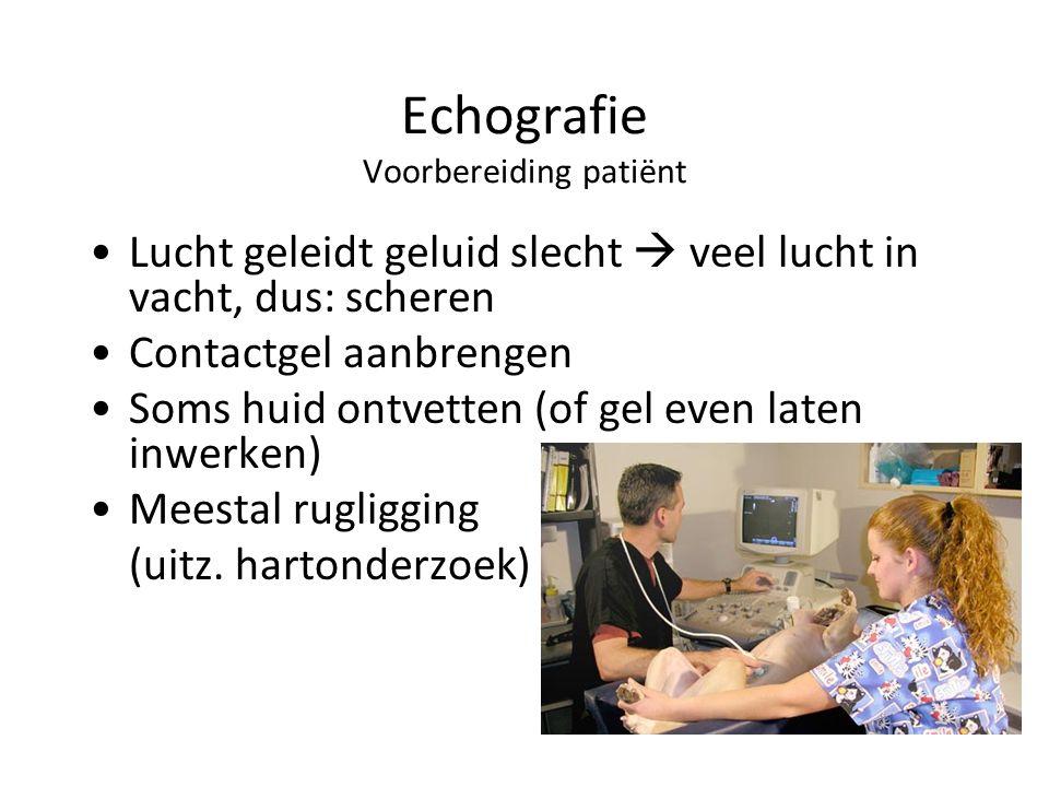 Echografie Voorbereiding patiënt Lucht geleidt geluid slecht  veel lucht in vacht, dus: scheren Contactgel aanbrengen Soms huid ontvetten (of gel even laten inwerken) Meestal rugligging (uitz.