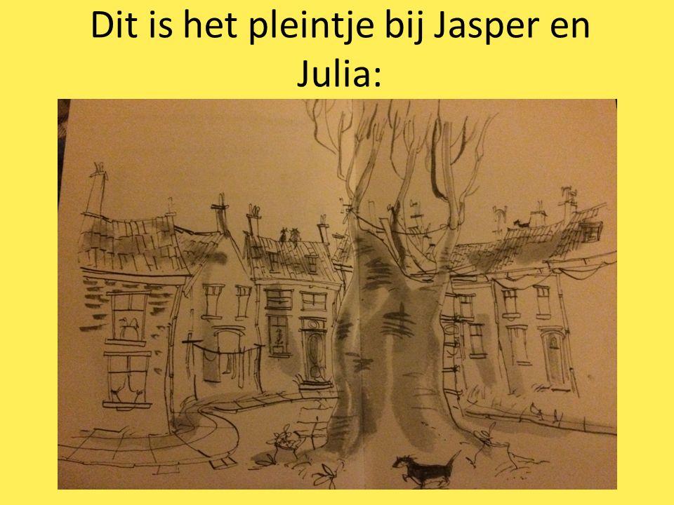 Dit is het pleintje bij Jasper en Julia: