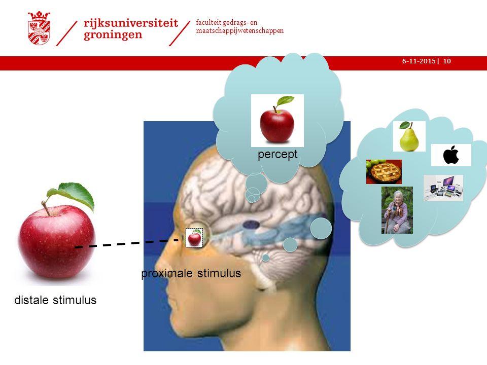| faculteit gedrags- en maatschappijwetenschappen 6-11-201510 distale stimulus proximale stimulus percept