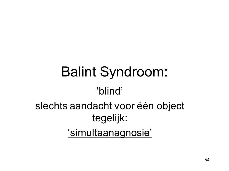 Balint Syndroom: 'blind' slechts aandacht voor één object tegelijk: 'simultaanagnosie' 54