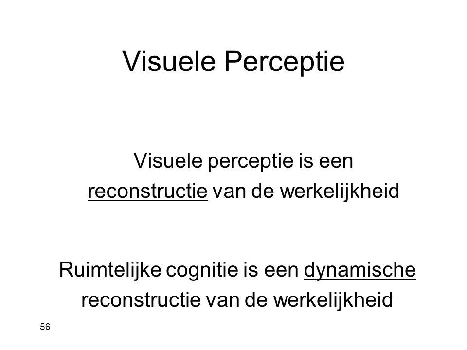 Visuele Perceptie Ruimtelijke cognitie is een dynamische reconstructie van de werkelijkheid 56 Visuele perceptie is een reconstructie van de werkelijkheid