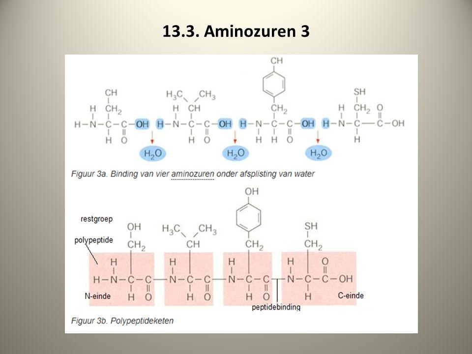 13.3. Aminozuren 3