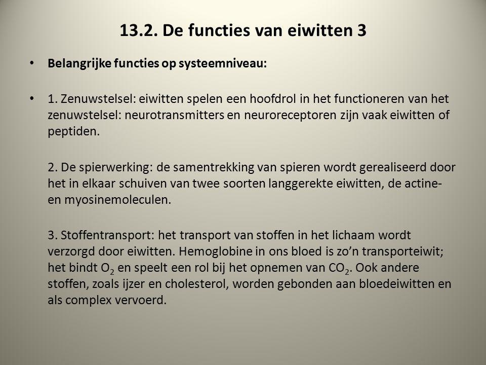 13.2. De functies van eiwitten 3 Belangrijke functies op systeemniveau: 1. Zenuwstelsel: eiwitten spelen een hoofdrol in het functioneren van het zenu