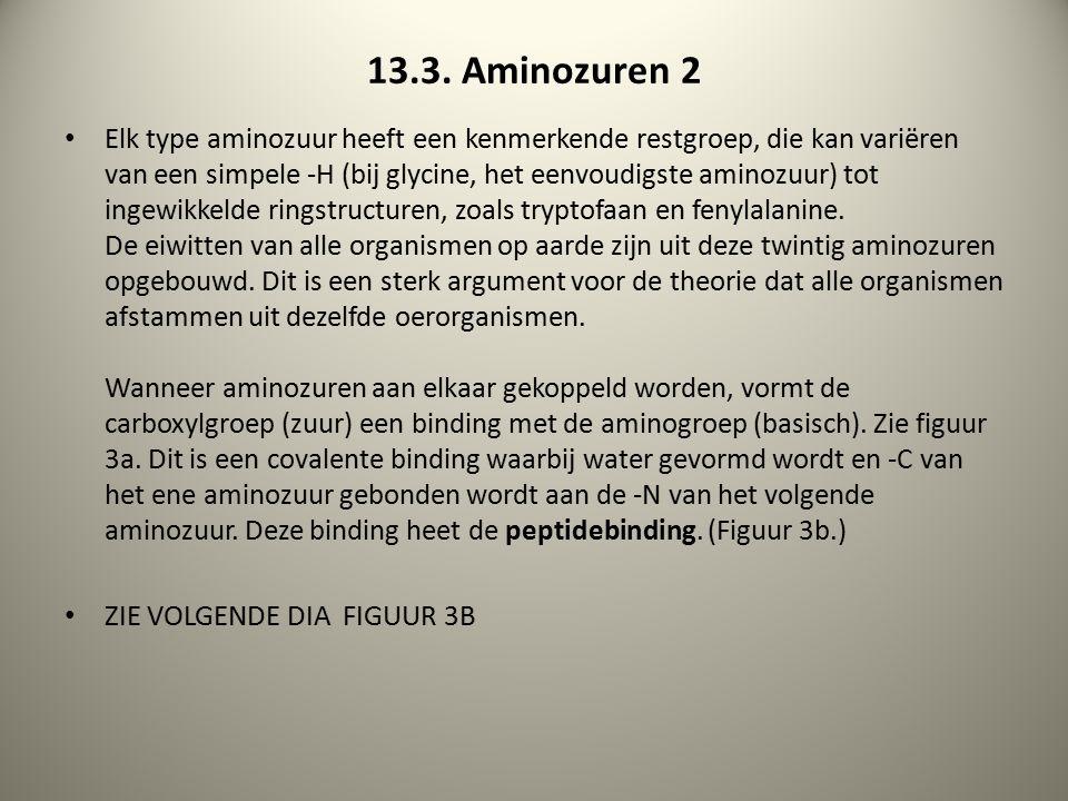 13.3. Aminozuren 2 Elk type aminozuur heeft een kenmerkende restgroep, die kan variëren van een simpele -H (bij glycine, het eenvoudigste aminozuur) t