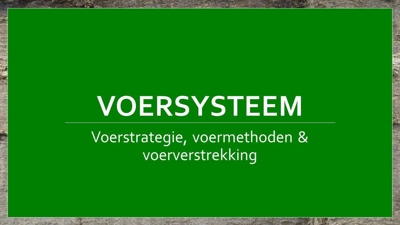 VOERSYSTEEM Voerstrategie, voermethoden & voerverstrekking