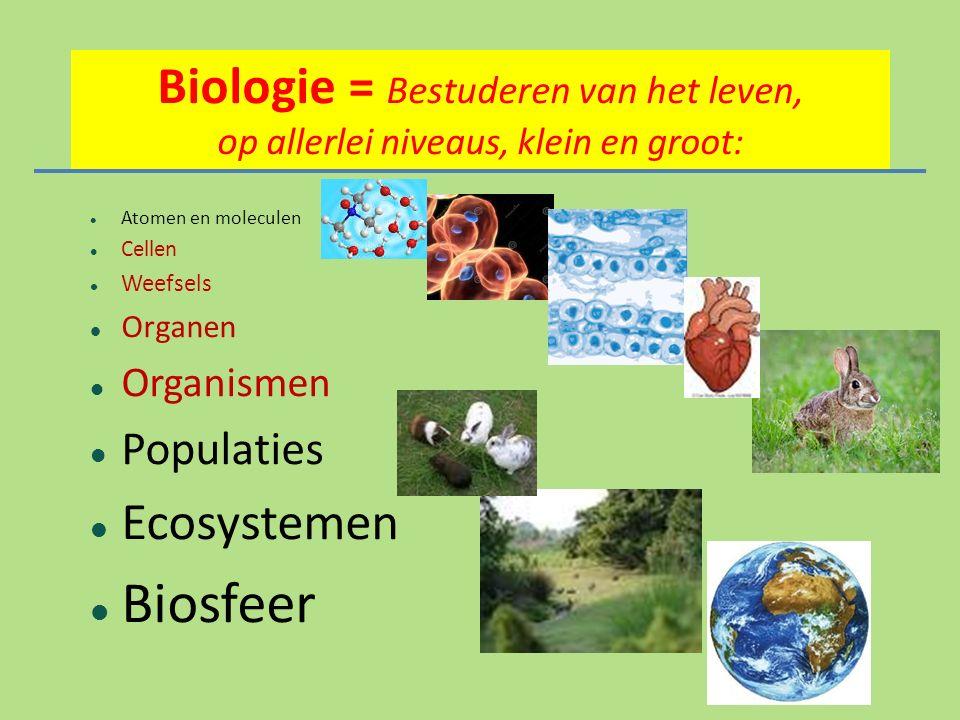 Biologie = Bestuderen van het leven, o p allerlei niveaus, klein en groot: Atomen en moleculen Cellen Weefsels Organen Organismen Populaties Ecosystemen Biosfeer
