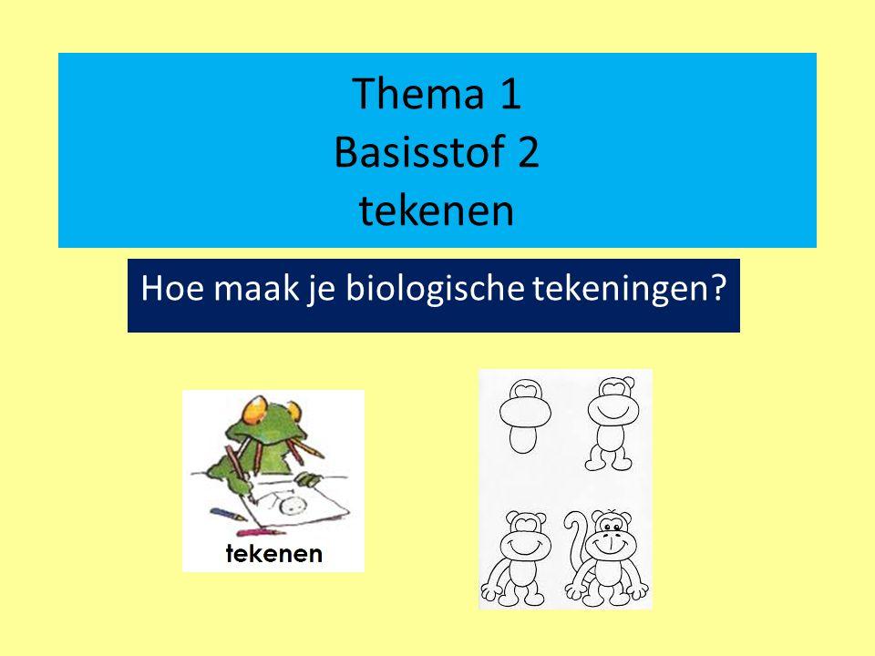 Thema 1 Basisstof 2 tekenen Hoe maak je biologische tekeningen?