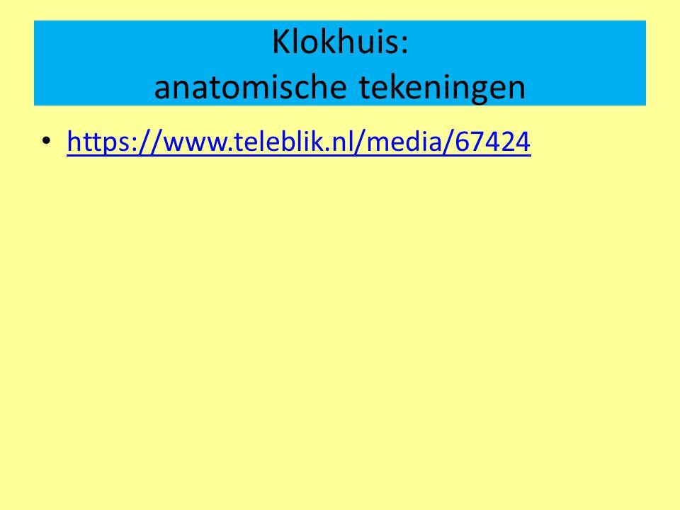 Klokhuis: anatomische tekeningen https://www.teleblik.nl/media/67424