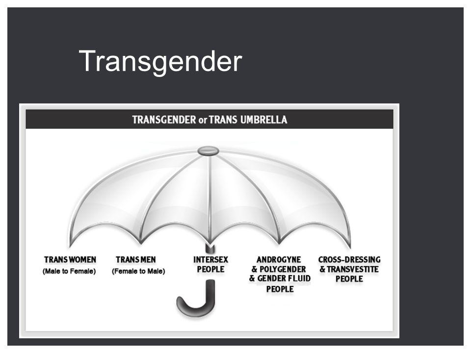 Transgender Travestie Transgenderisme Transseksualiteit www.genderindeblender.be