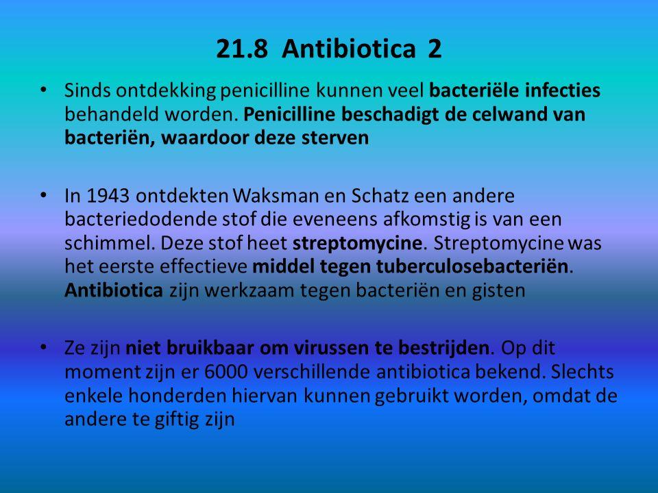 21.8 Antibiotica 2 Sinds ontdekking penicilline kunnen veel bacteriële infecties behandeld worden. Penicilline beschadigt de celwand van bacteriën, wa