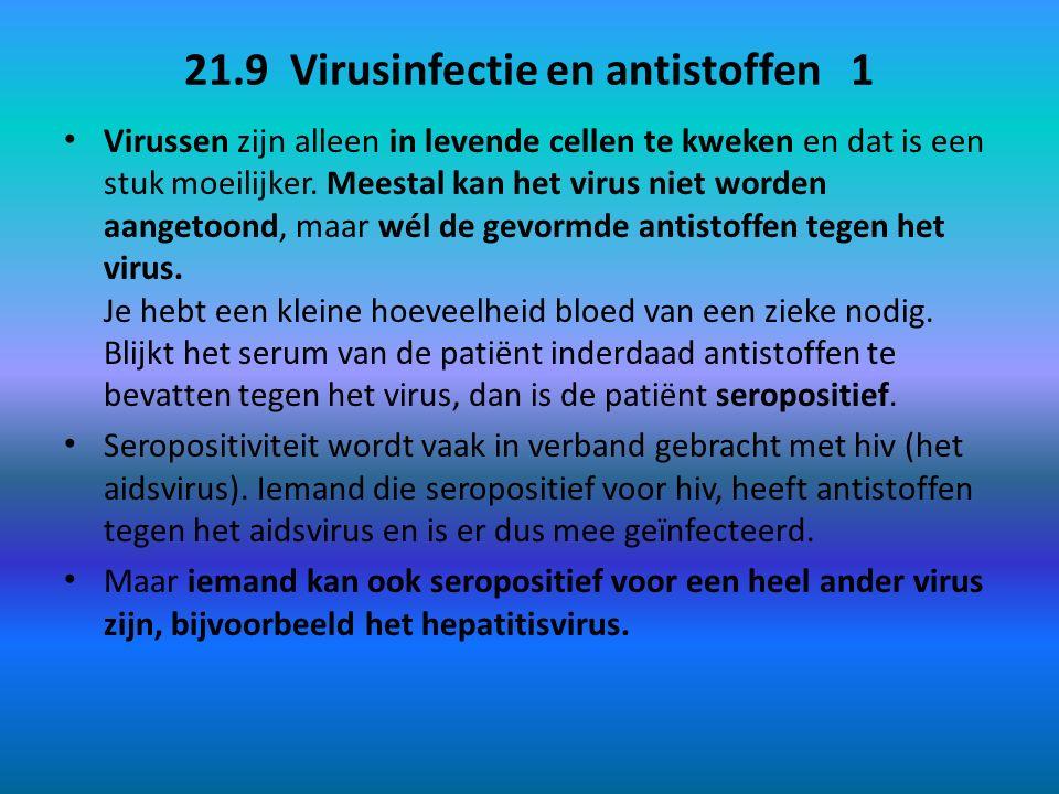 21.9 Virusinfectie en antistoffen 1 Virussen zijn alleen in levende cellen te kweken en dat is een stuk moeilijker. Meestal kan het virus niet worden