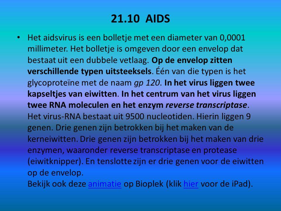 21.10 AIDS Het aidsvirus is een bolletje met een diameter van 0,0001 millimeter. Het bolletje is omgeven door een envelop dat bestaat uit een dubbele