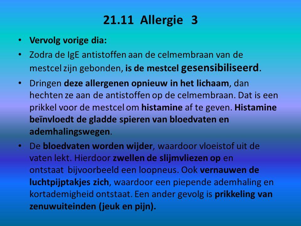 21.11 Allergie 3 Vervolg vorige dia: Zodra de IgE antistoffen aan de celmembraan van de mestcel zijn gebonden, is de mestcel gesensibiliseerd.