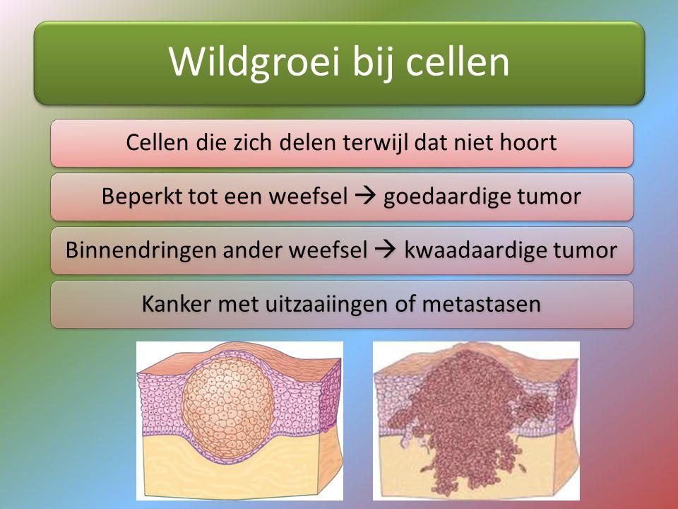 Wildgroei bij cellen Cellen die zich delen terwijl dat niet hoortBeperkt tot een weefsel  goedaardige tumorBinnendringen ander weefsel  kwaadaardige