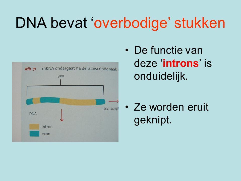 DNA bevat 'overbodige' stukken De functie van deze 'introns' is onduidelijk.