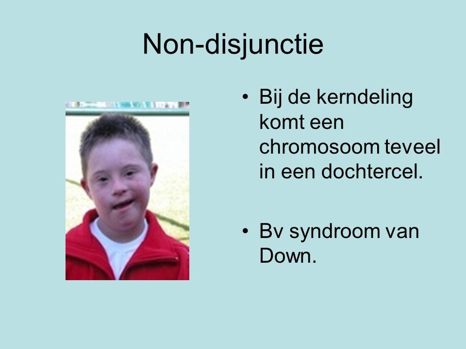 Non-disjunctie Bij de kerndeling komt een chromosoom teveel in een dochtercel. Bv syndroom van Down.