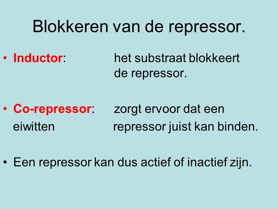 Blokkeren van de repressor. Inductor: het substraat blokkeert de repressor. Co-repressor: zorgt ervoor dat een eiwitten repressor juist kan binden. Ee