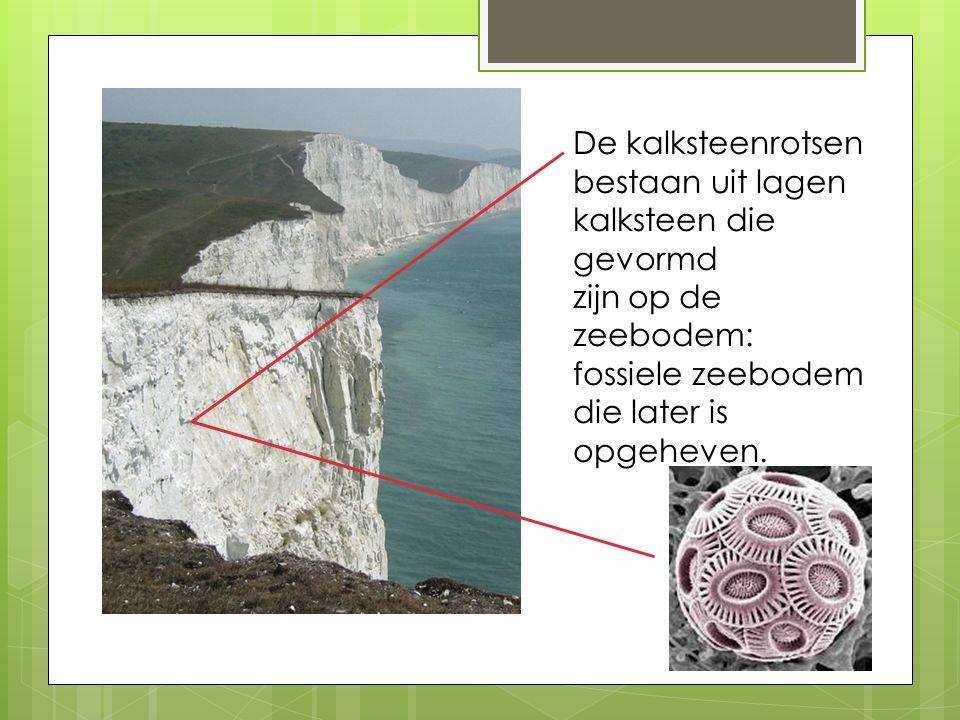 De kalksteenrotsen bestaan uit lagen kalksteen die gevormd zijn op de zeebodem: fossiele zeebodem die later is opgeheven.