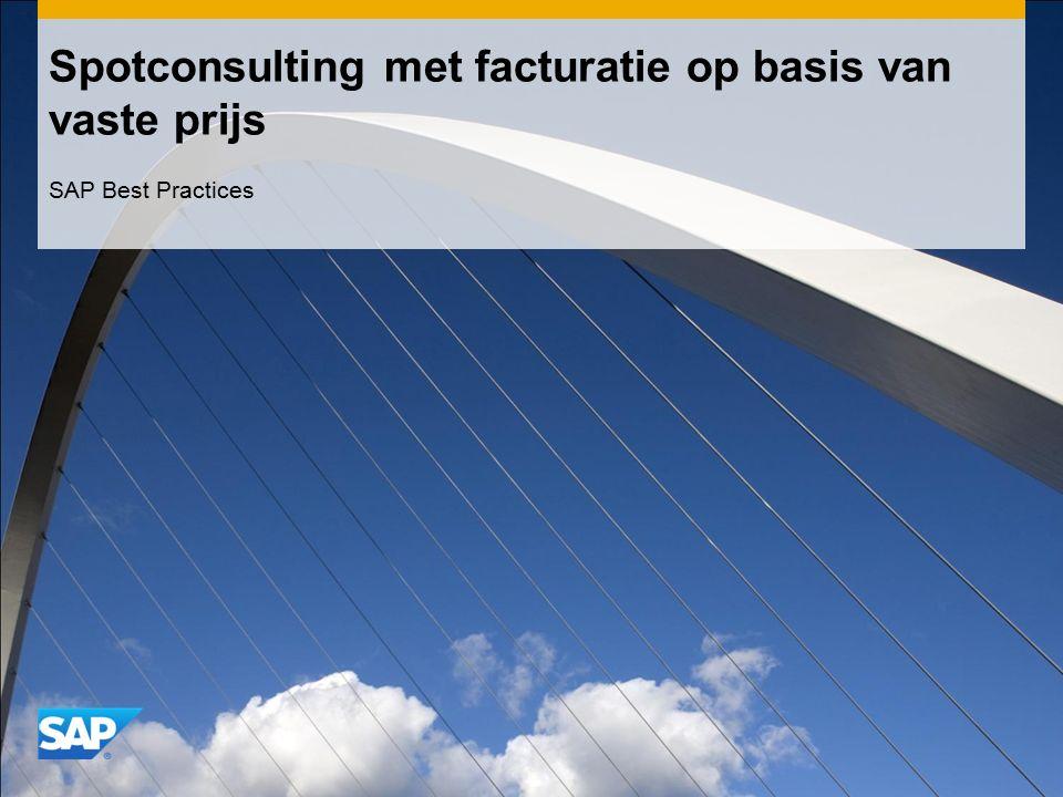 Spotconsulting met facturatie op basis van vaste prijs SAP Best Practices