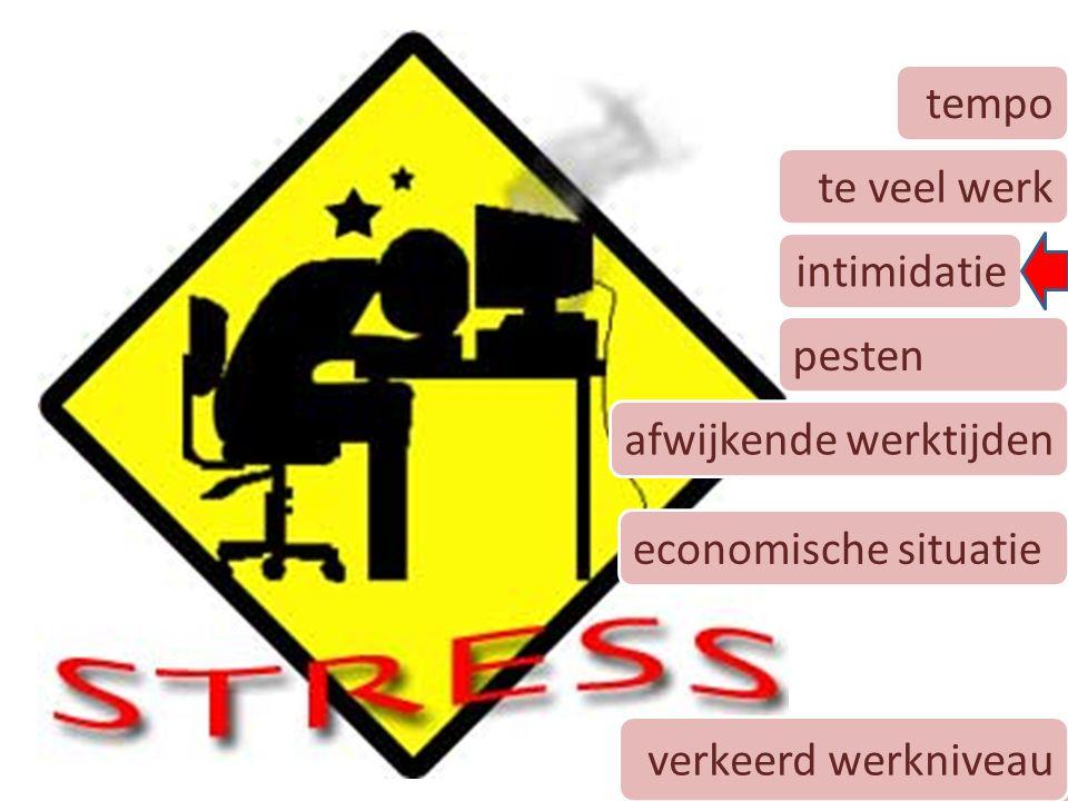 9 tempo te veel werk intimidatie pesten afwijkende werktijden economische situatie verkeerd werkniveau