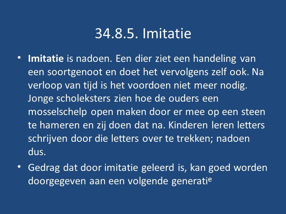 34.8.5.Imitatie Imitatie is nadoen.