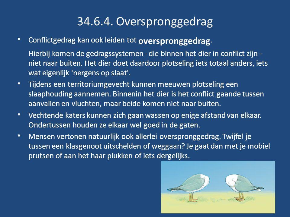 34.6.4.Overspronggedrag Conflictgedrag kan ook leiden tot overspronggedrag.