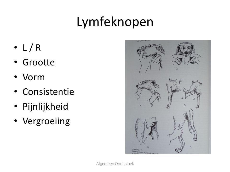 Lymfeknopen L / R Grootte Vorm Consistentie Pijnlijkheid Vergroeiing Algemeen Onderzoek
