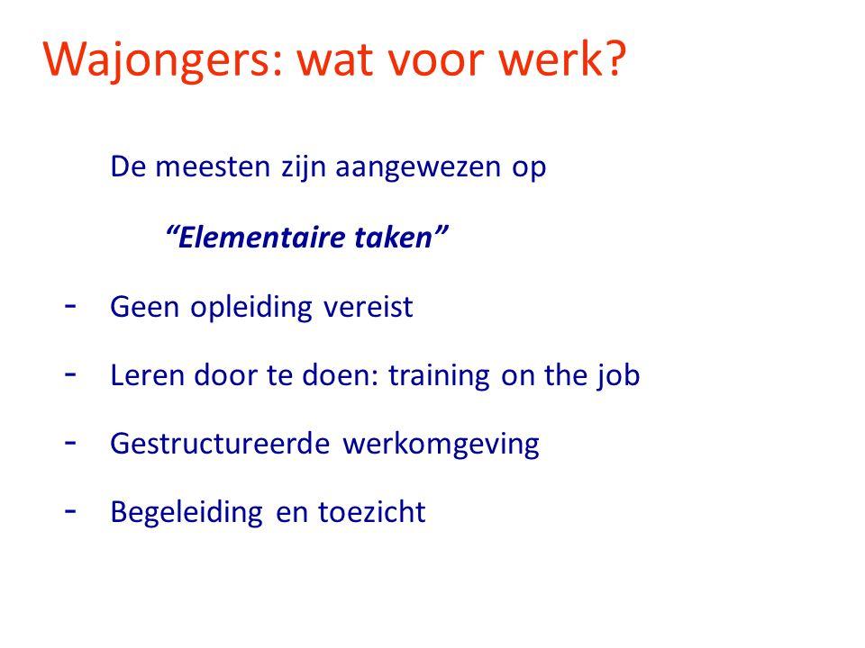 """Wajongers: wat voor werk? De meesten zijn aangewezen op """"Elementaire taken"""" - Geen opleiding vereist - Leren door te doen: training on the job - Gestr"""