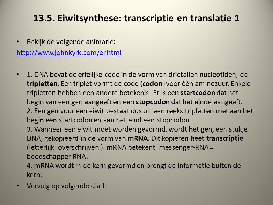 13.5.Eiwitsynthese: transcriptie en translatie 2 5.