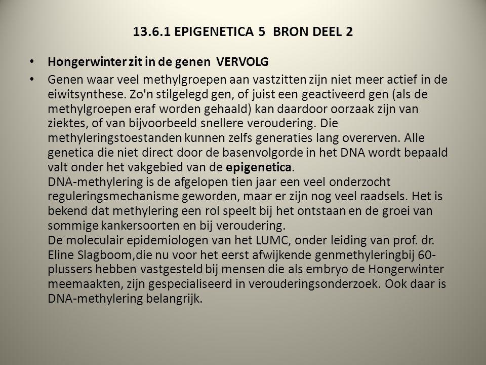 13.6.1 EPIGENETICA 5 BRON DEEL 2 Hongerwinter zit in de genen VERVOLG Genen waar veel methylgroepen aan vastzitten zijn niet meer actief in de eiwitsy