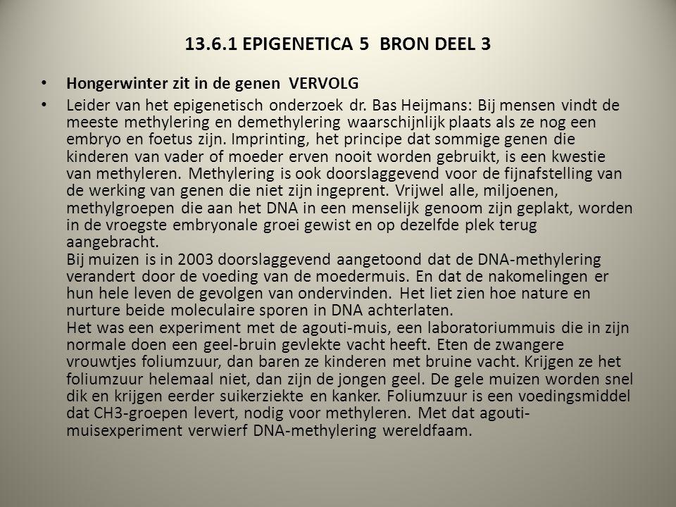13.6.1 EPIGENETICA 5 BRON DEEL 3 Hongerwinter zit in de genen VERVOLG Leider van het epigenetisch onderzoek dr. Bas Heijmans: Bij mensen vindt de mees