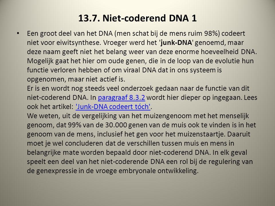 13.7. Niet-coderend DNA 1 Een groot deel van het DNA (men schat bij de mens ruim 98%) codeert niet voor eiwitsynthese. Vroeger werd het 'junk-DNA' gen