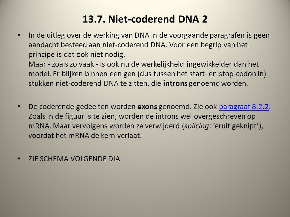 13.7. Niet-coderend DNA 2 In de uitleg over de werking van DNA in de voorgaande paragrafen is geen aandacht besteed aan niet-coderend DNA. Voor een be