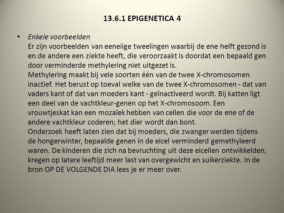 13.6.1 EPIGENETICA 4 Enkele voorbeelden Er zijn voorbeelden van eeneiige tweelingen waarbij de ene helft gezond is en de andere een ziekte heeft, die