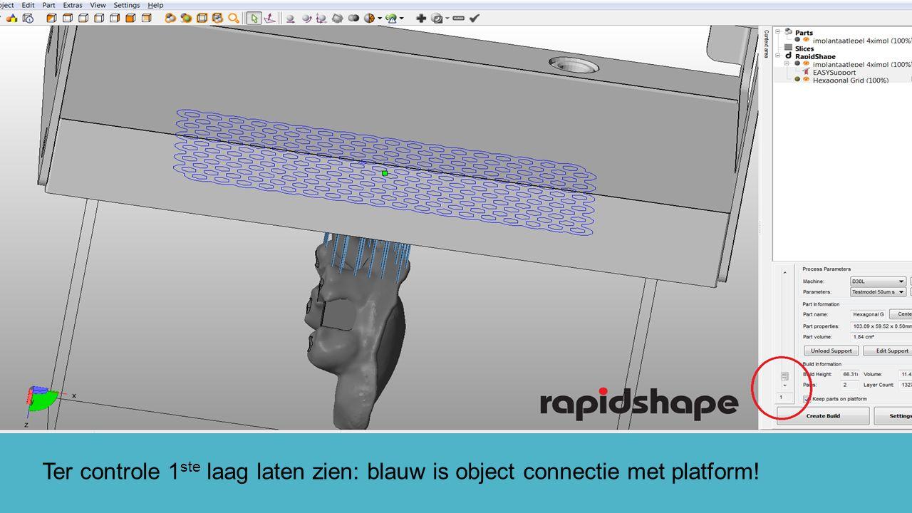Ter controle 1 ste laag laten zien: blauw is object connectie met platform!