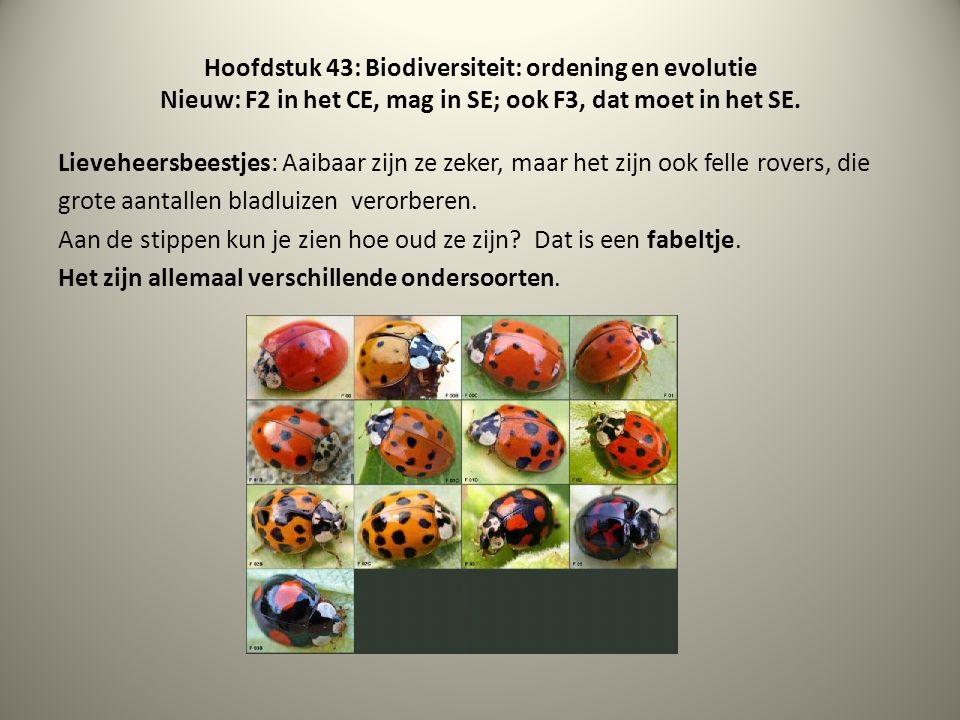 Hoofdstuk 43: Biodiversiteit: ordening en evolutie Nieuw: F2 in het CE, mag in SE; ook F3, dat moet in het SE. Lieveheersbeestjes: Aaibaar zijn ze zek