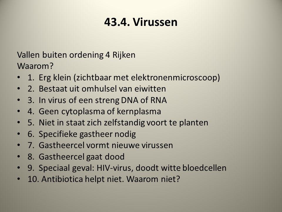 43.4. Virussen Vallen buiten ordening 4 Rijken Waarom? 1. Erg klein (zichtbaar met elektronenmicroscoop) 2. Bestaat uit omhulsel van eiwitten 3. In vi