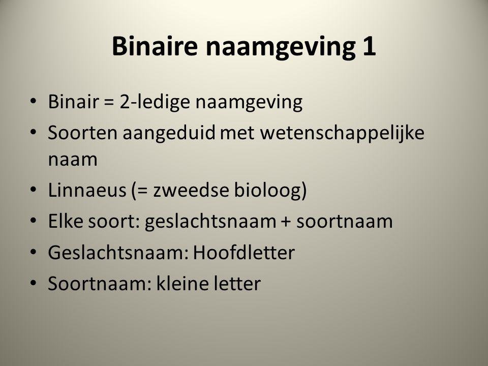 Binaire naamgeving 1 Binair = 2-ledige naamgeving Soorten aangeduid met wetenschappelijke naam Linnaeus (= zweedse bioloog) Elke soort: geslachtsnaam + soortnaam Geslachtsnaam: Hoofdletter Soortnaam: kleine letter