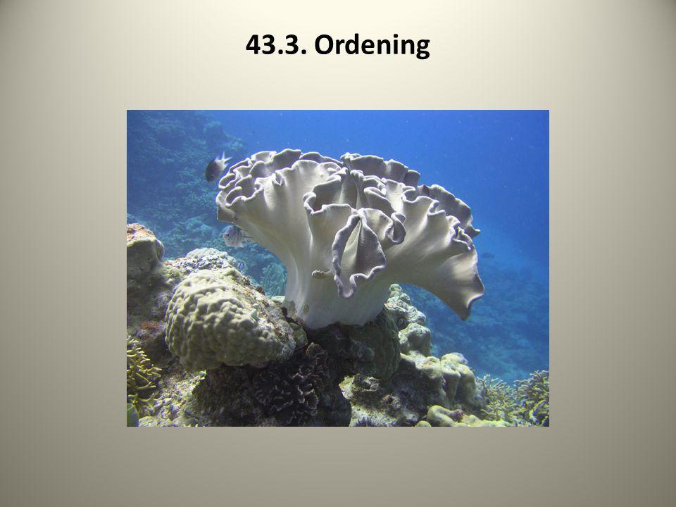 43.3. Ordening