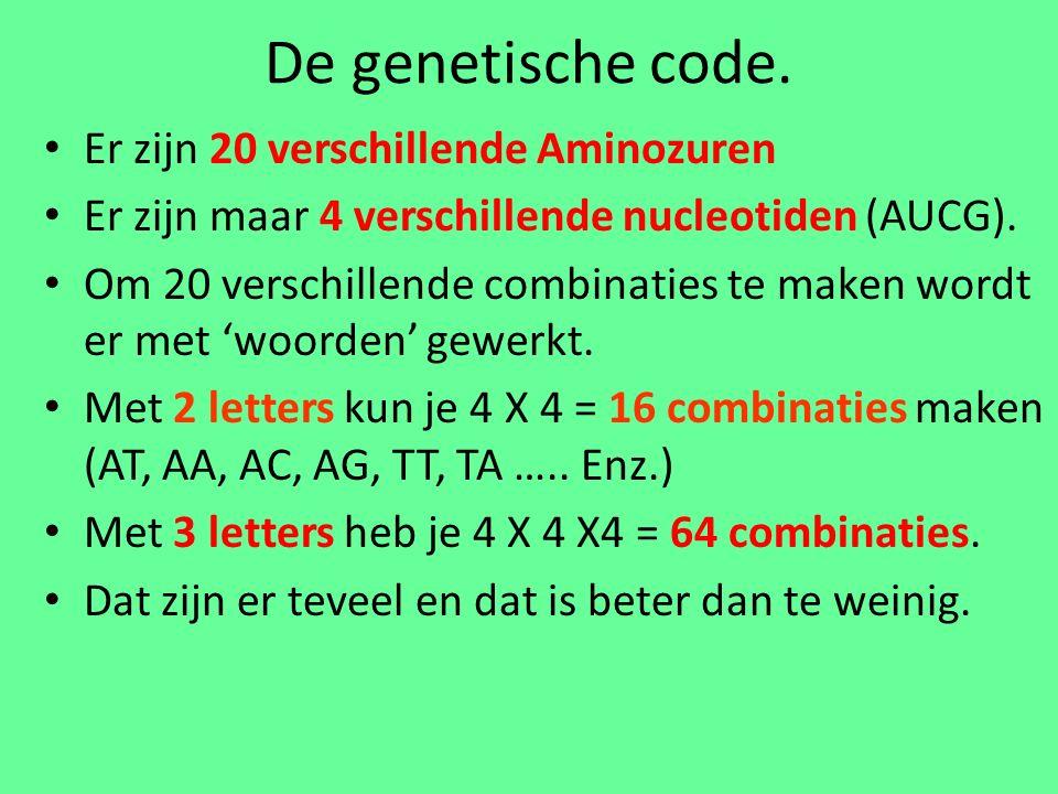 De genetische code.