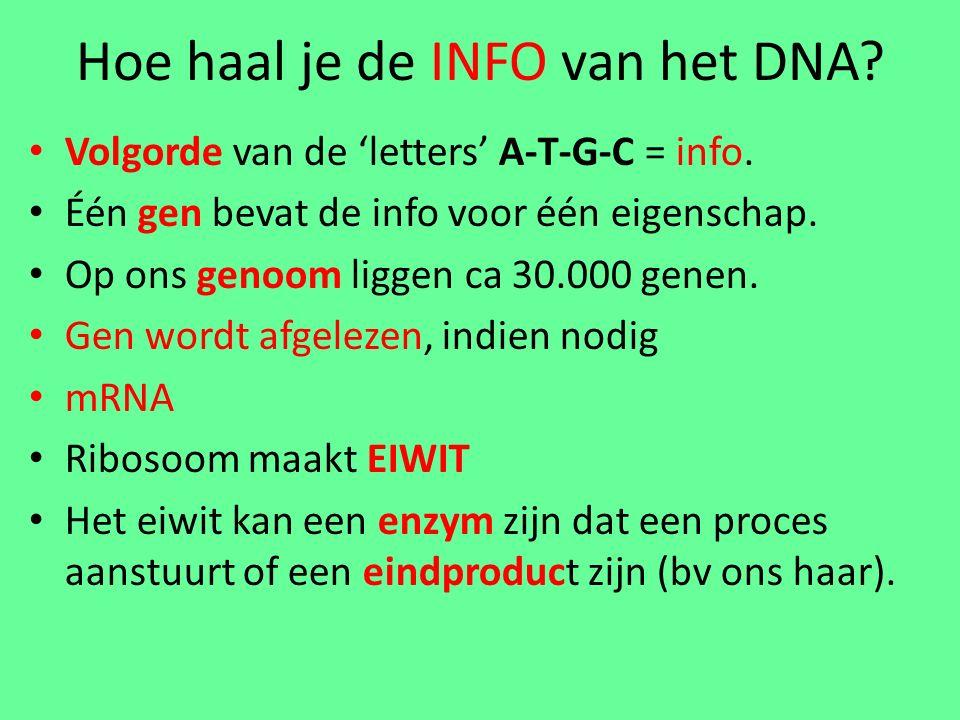 Hoe haal je de INFO van het DNA.Volgorde van de 'letters' A-T-G-C = info.