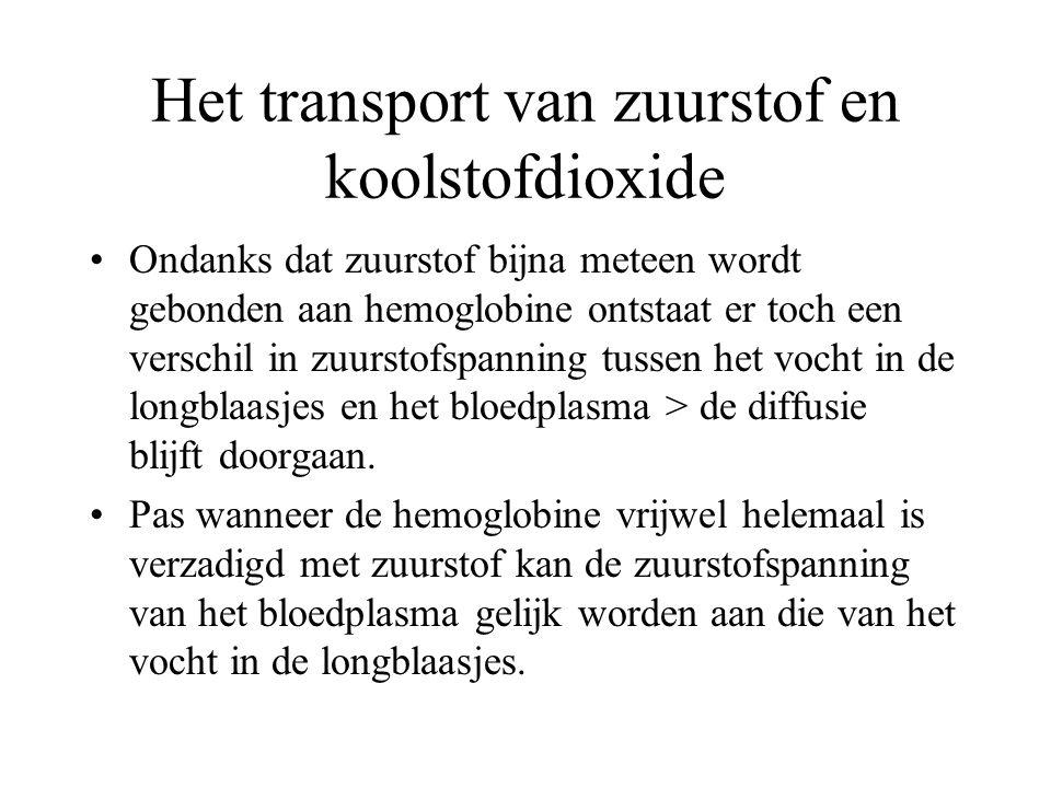 Het transport van zuurstof en koolstofdioxide Ondanks dat zuurstof bijna meteen wordt gebonden aan hemoglobine ontstaat er toch een verschil in zuurst
