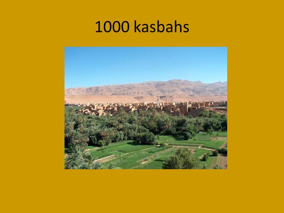 1000 kasbahs